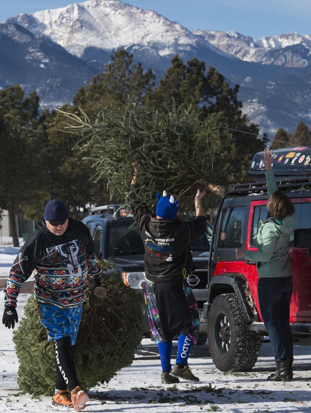 Where To Recycle Your Christmas Tree In Colorado Springs