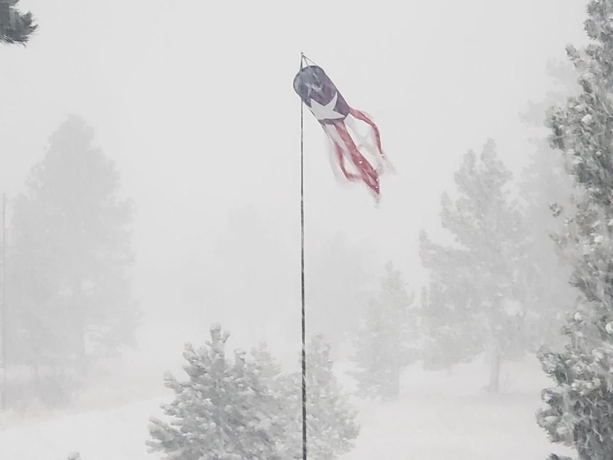 Teller County bears bomb cyclone