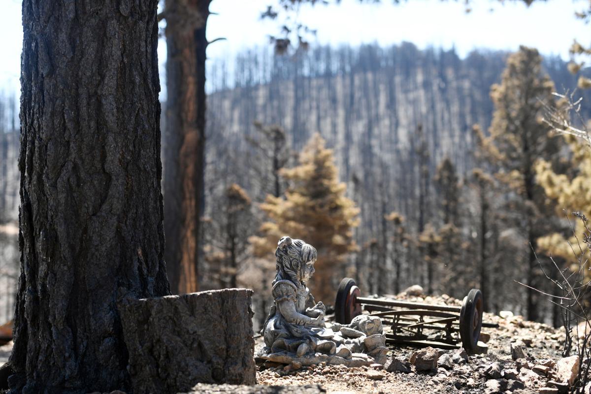 Spring Creek Fire 14