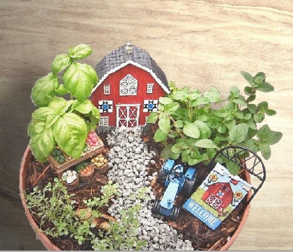 SPONSORED: How to Build a Fairy Garden (VIDEO)