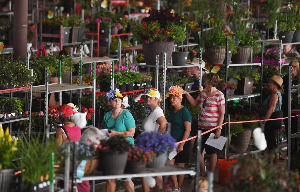 Colorado Springs Hidden Flower Haven With A Deep Family History
