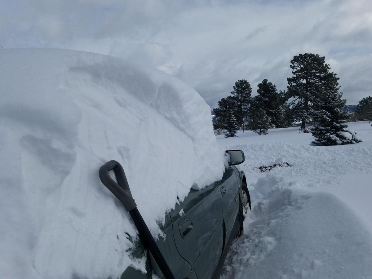 blizzard1 debbie.jpg