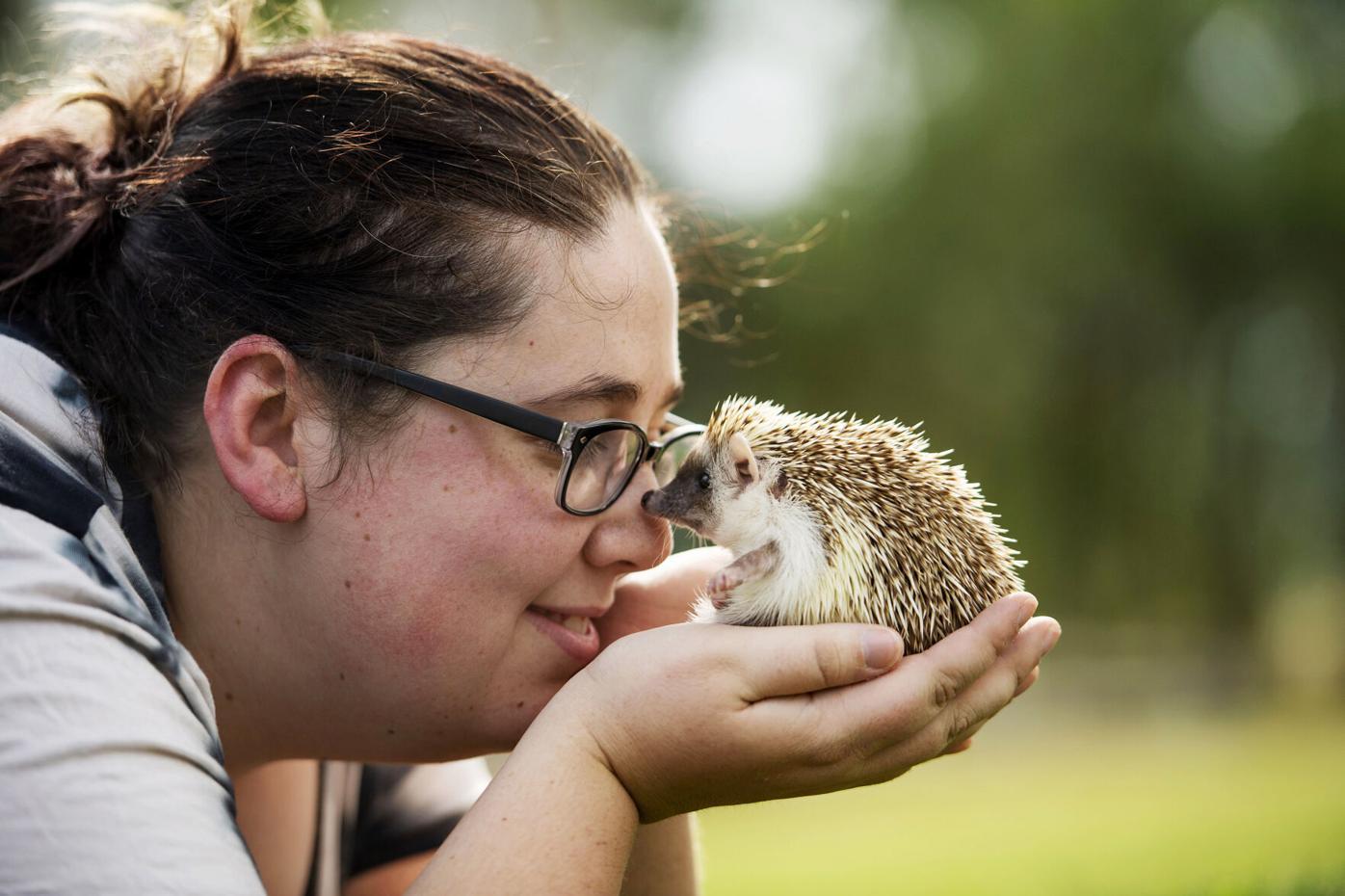 082921-life-hedgehogs 01