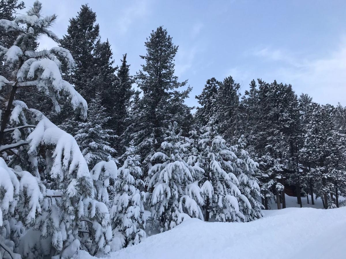 blizzard2 nathan.jpg