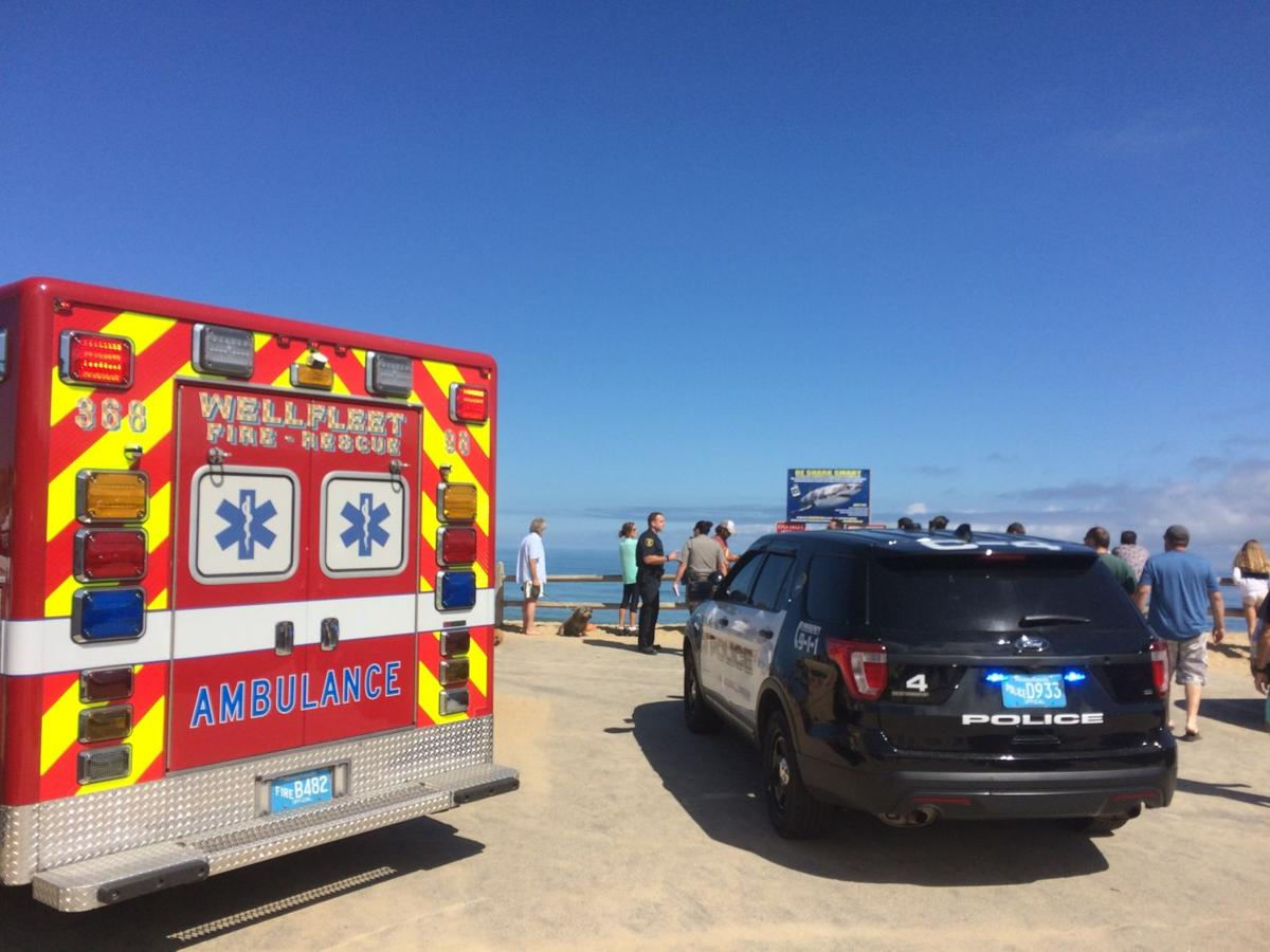 Police: Man dies of shark attack off Cape Cod