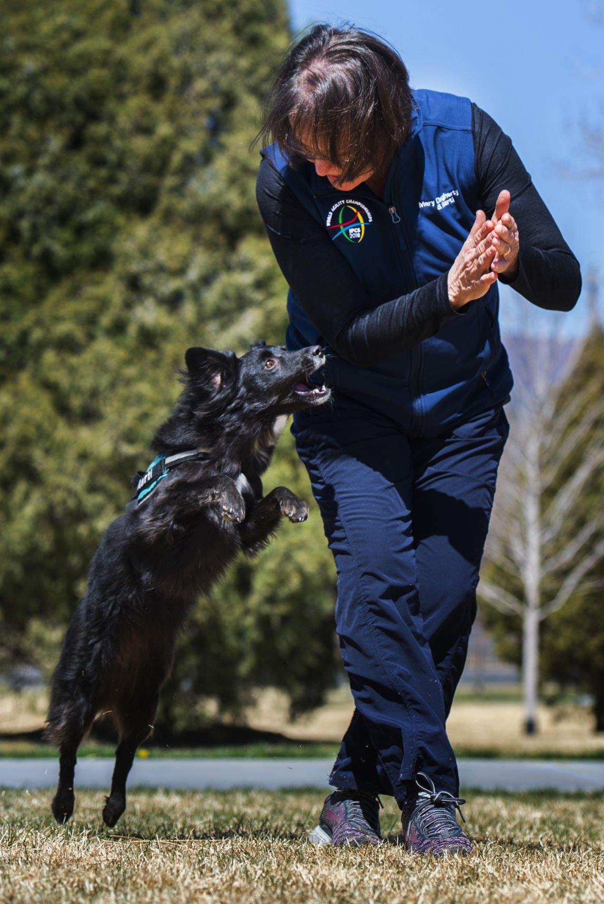 Colorado Springs dog trainer, pup represent U.S. in agility trials in Italy