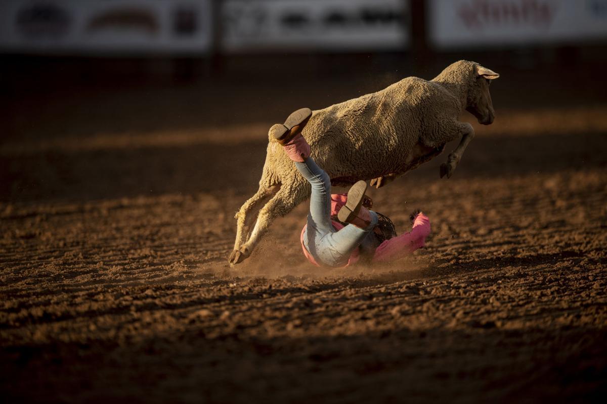071219-news-Rodeo 14.jpg