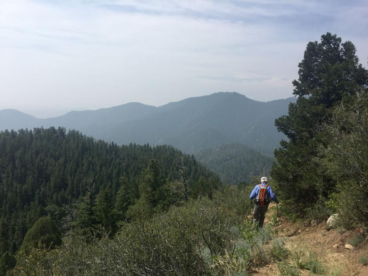 (CHEYENNE) Dixon Trail