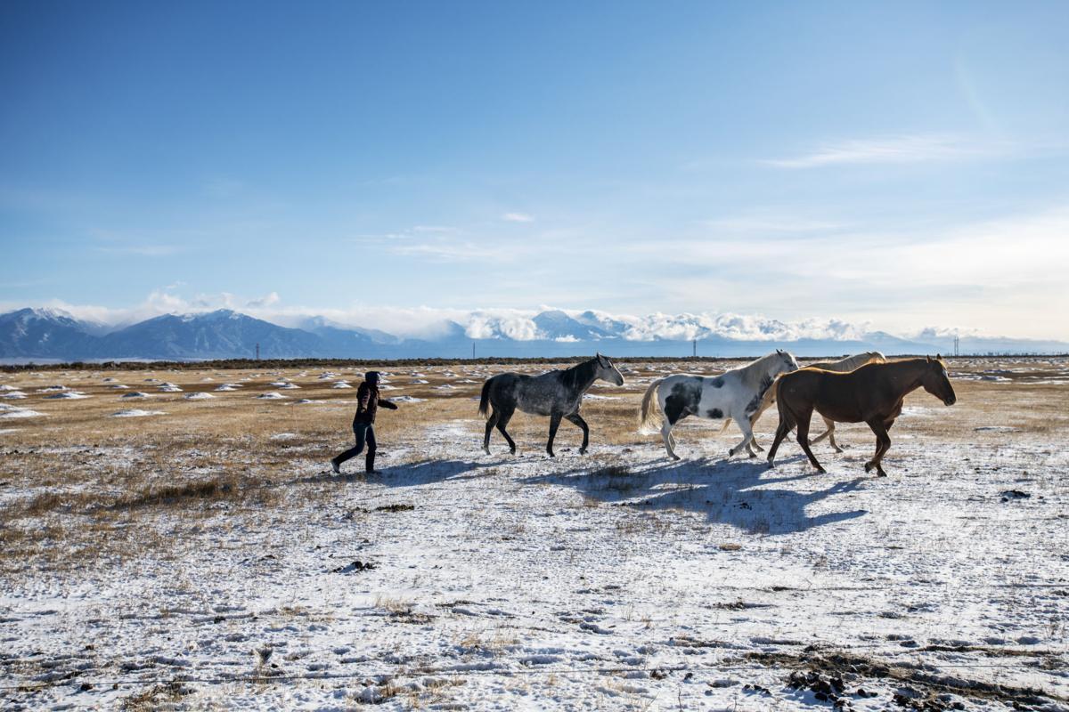 110118-news-women-in-ranching-5.JPG