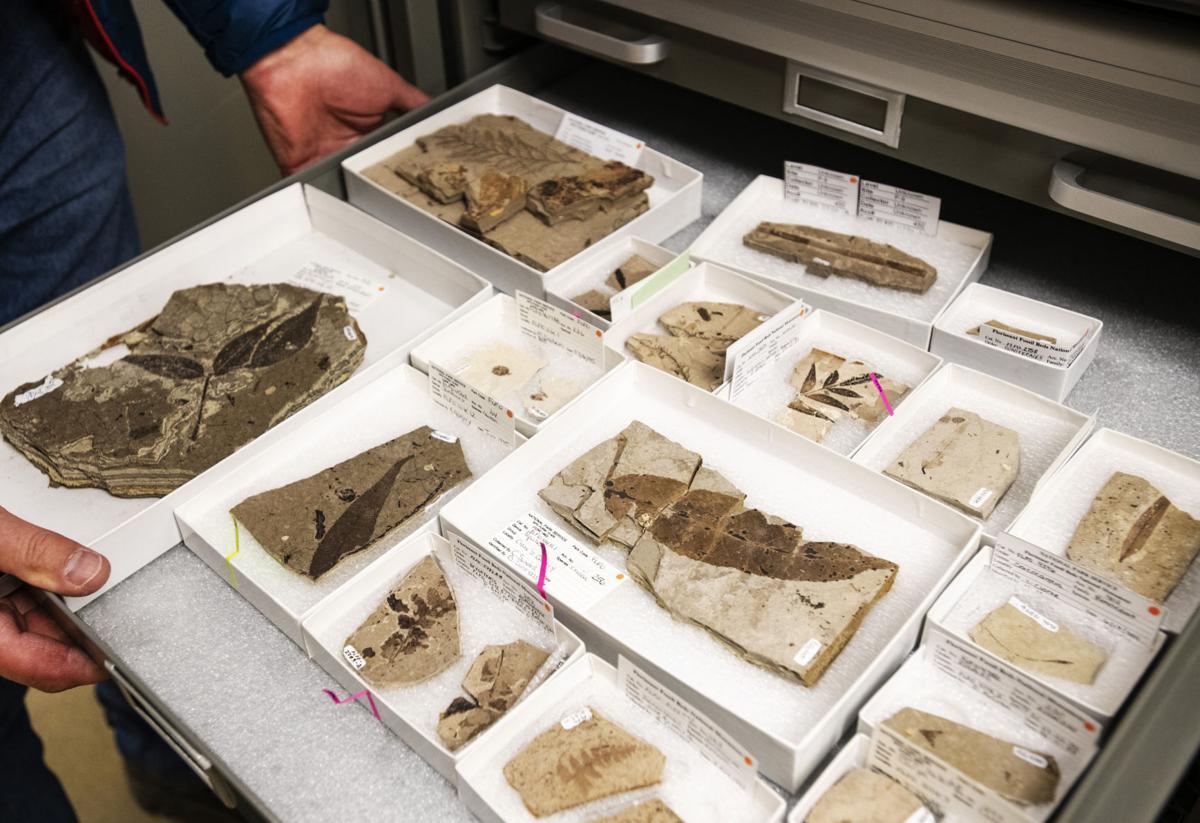 042219-ot-fossil-beds 1.jpg