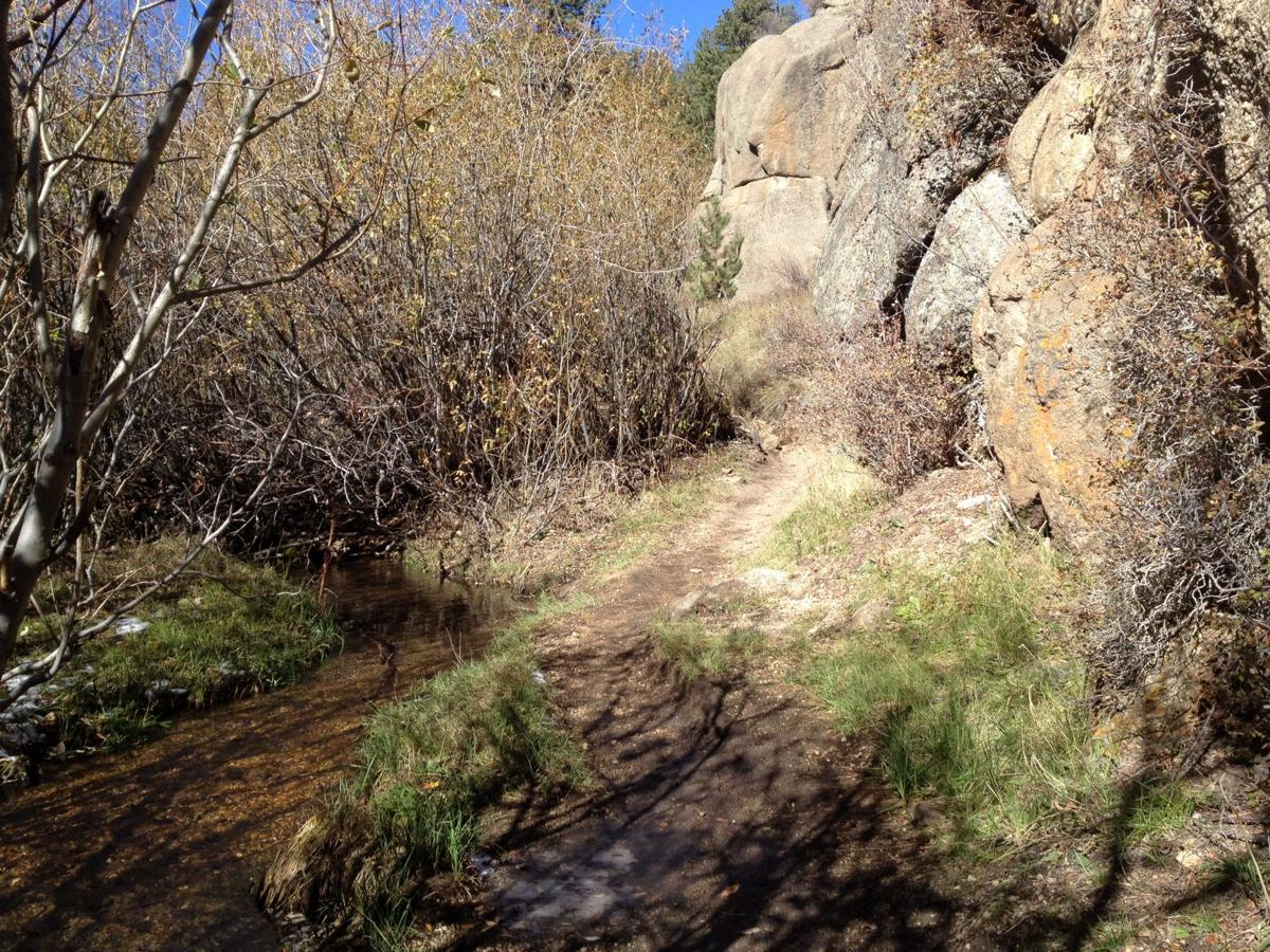 Catamount Trail