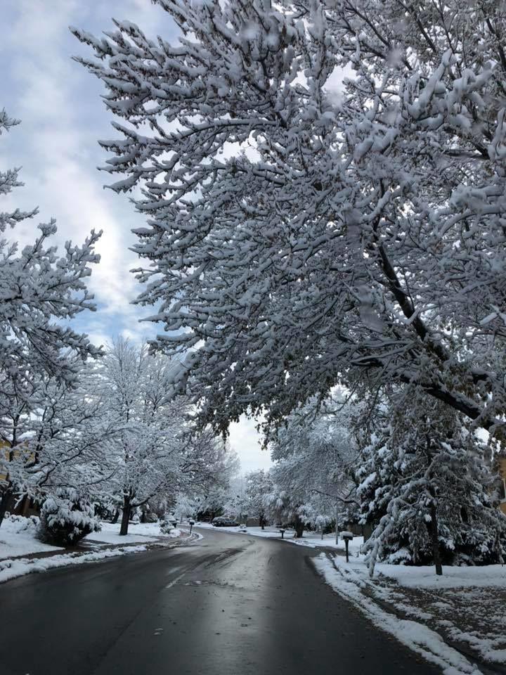 103118 reader snow photo