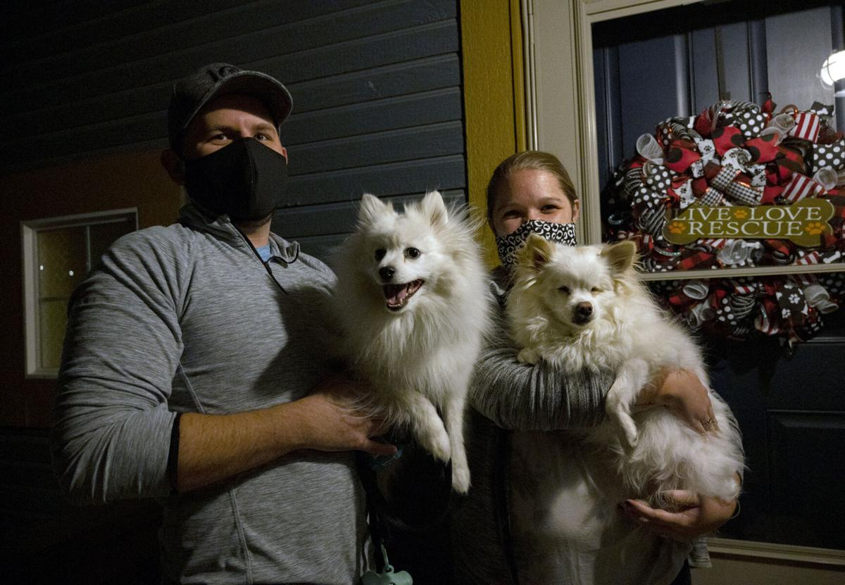 112420-hw-dogs 1