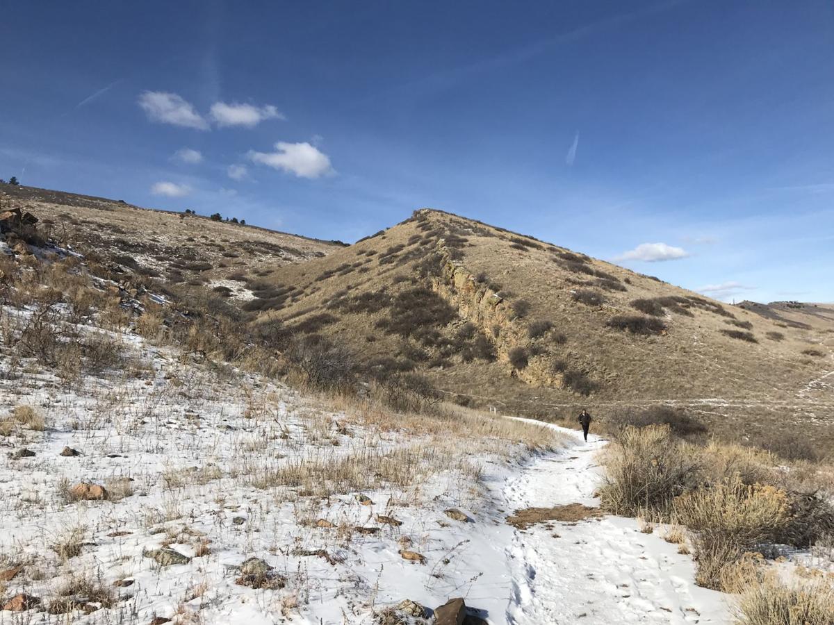 coyote ridge 2.jpg
