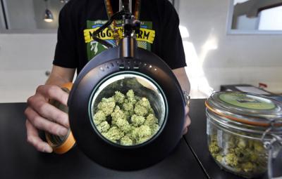 Marijuana initiatives on fall ballots in Utah, 3 other states