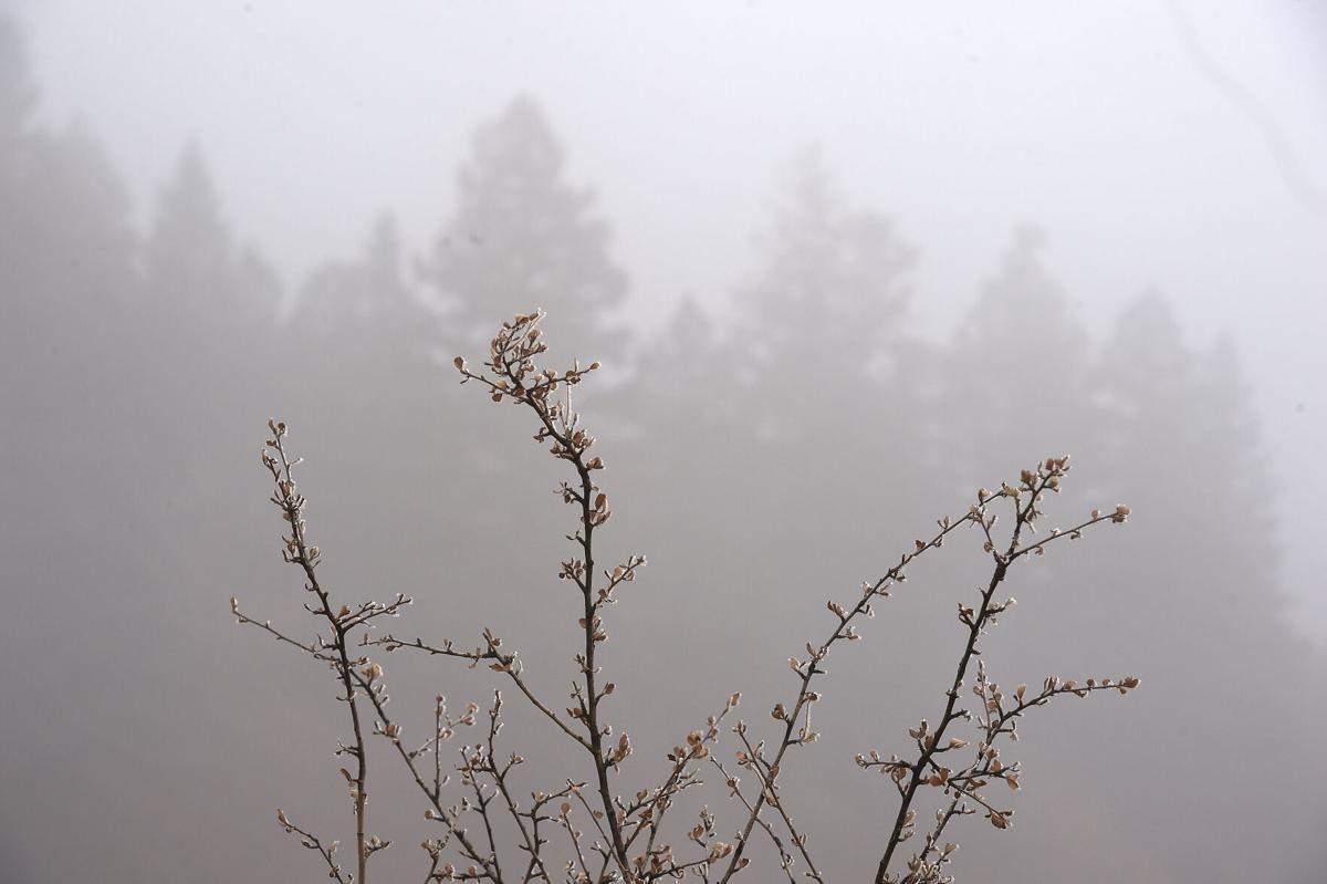 A foggy day in the Pikes Peak region