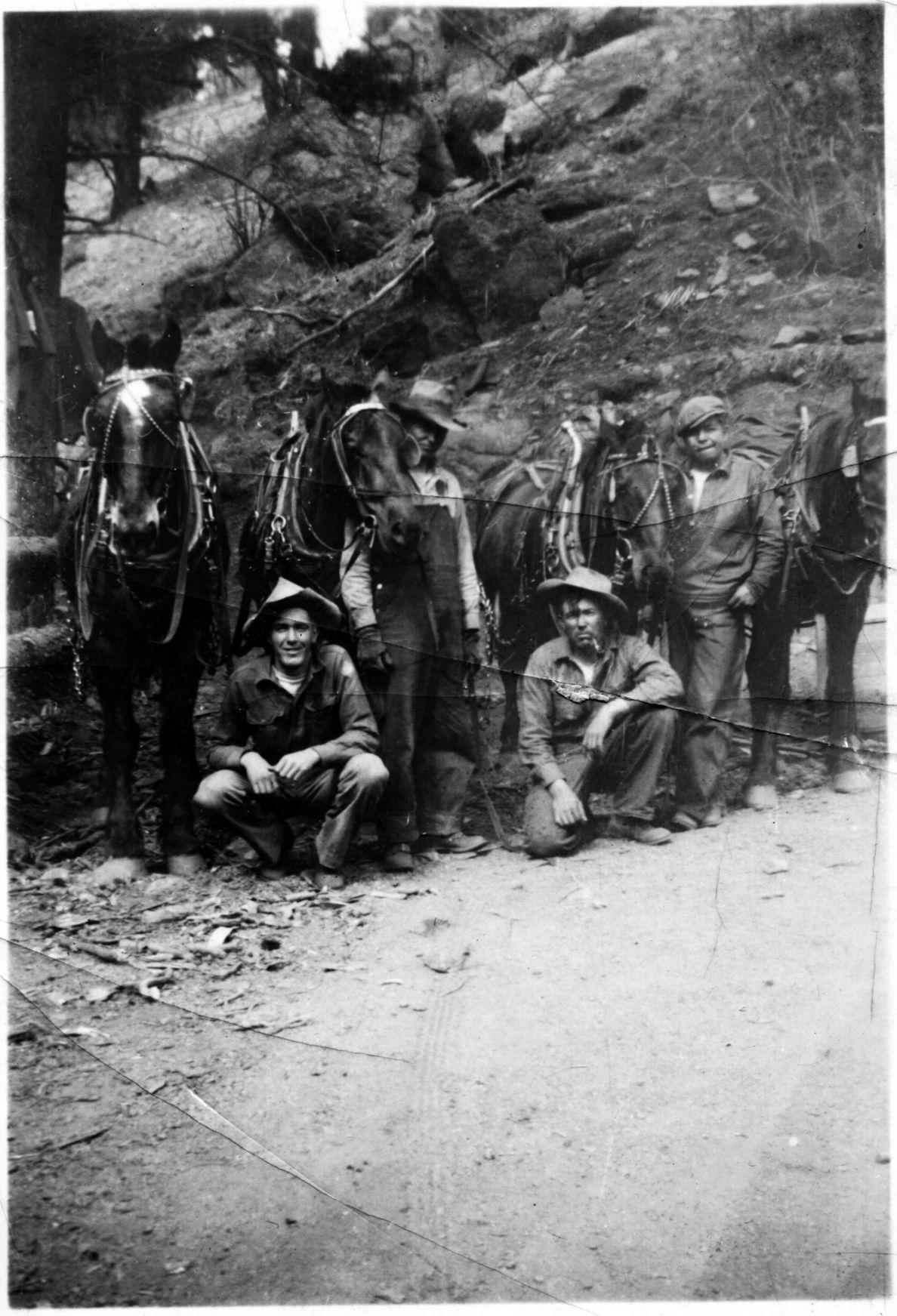 (TRIBUNE) Civilian Conservation Corps