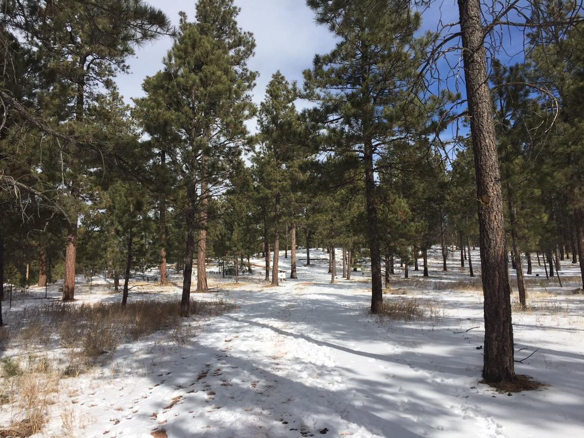 Happy Trails: The 'other' Section 16 outside Colorado Springs