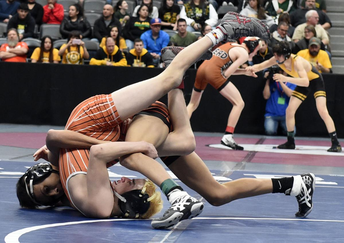 Lewis-Palmer's Skyler Hunt vs Greeley Central's Ricky Zavala