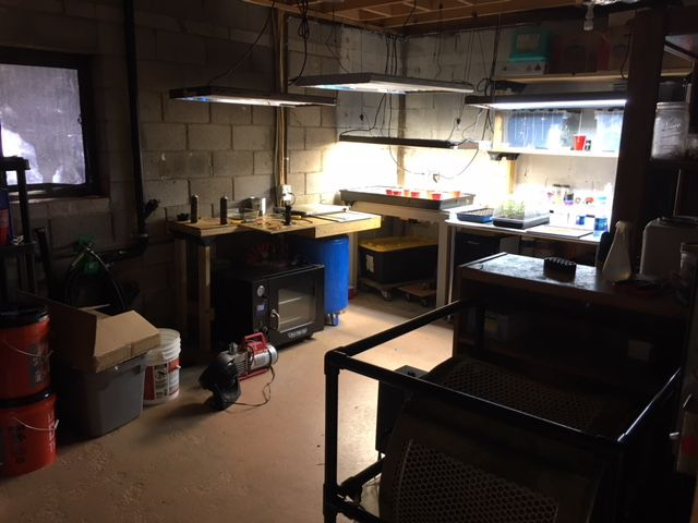 Illegal marijuana grow, hash oil lab raided in Teller County