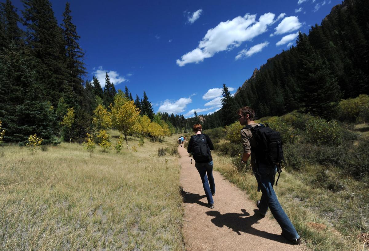 FYI 2016: Ute Pass (including Woodland Park, Divide, Cascade, Chipita Park, Green Mountain Falls)