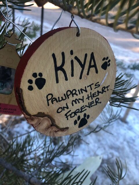 A seasonal tribute tree to pets