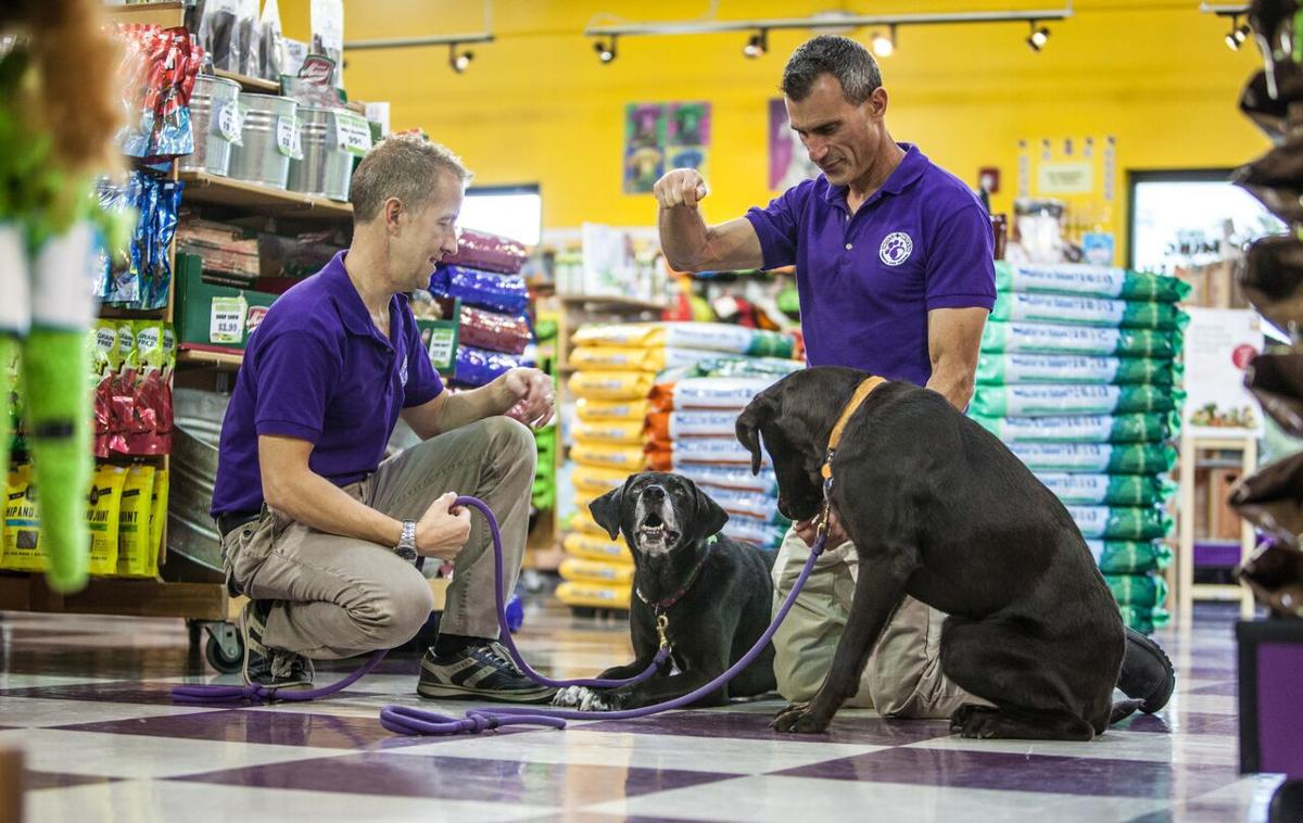 Wag N' Wash grows from single Colorado Springs store to a coast-to-coast business