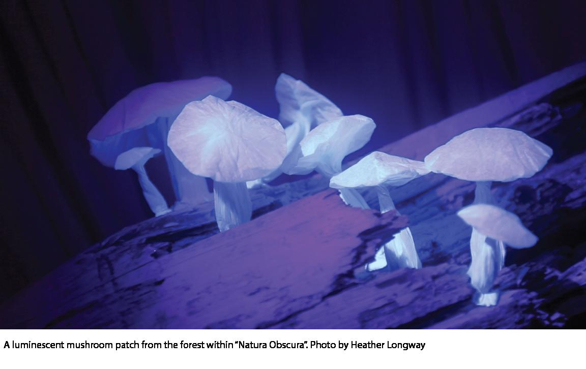 Natura Obscura 9.png