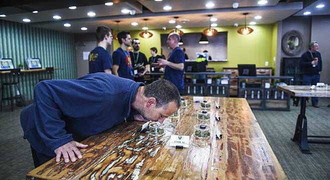 Recreational marijuana ballot proposal unlikely in Colorado Springs this year