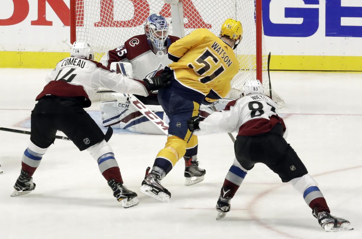 Avalanche Predators Hockey