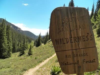 A journey into Colorado's final refuge for grizzly bears