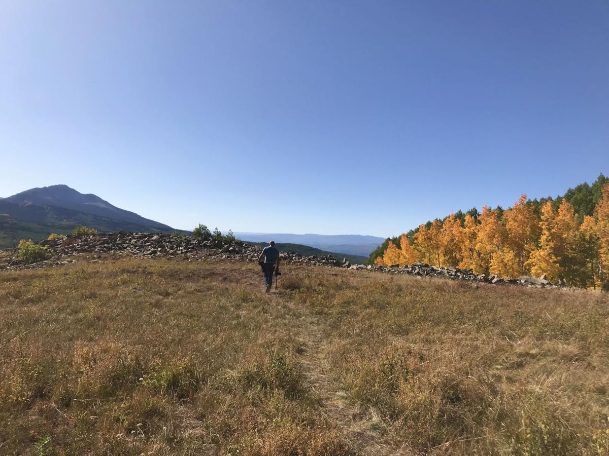 dyke trail.jpg