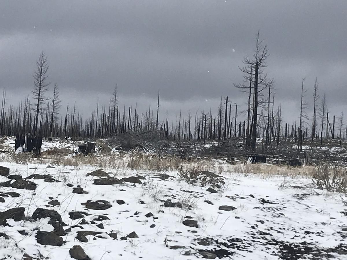 Barry Point Fire RenewWest of Denver