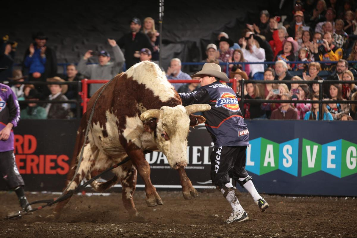 Shane Proctor rides Broken Arrow S Ranch/Dallas Schott's Cowboy Up for 87.5 during the second round of the Chicago Built Ford Tough series PBR. Photo by Andy Watson