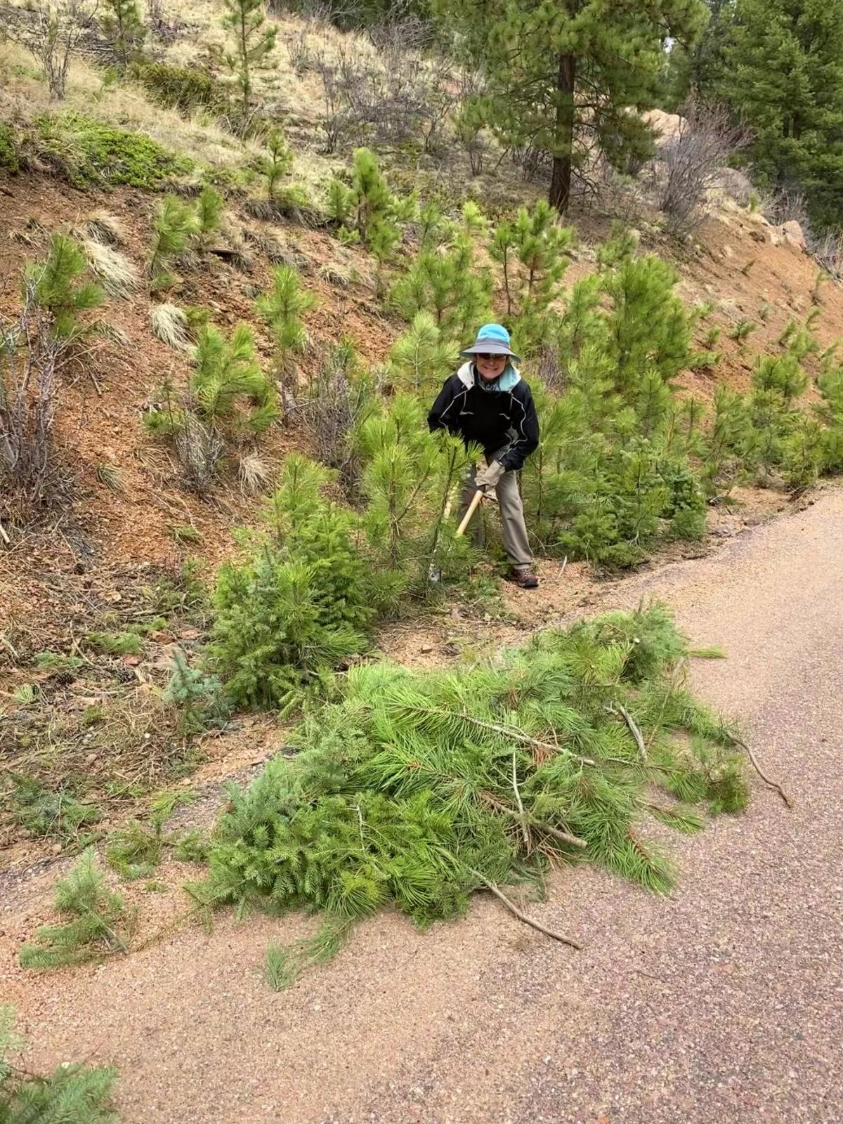 Working to keep Majestic Park safe