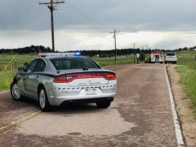 2 mules pulling carriage killed in crash east of Colorado Springs