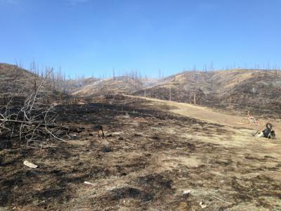 Wildfire north of Woodland Park started at shooting range, Forest Service says (copy)