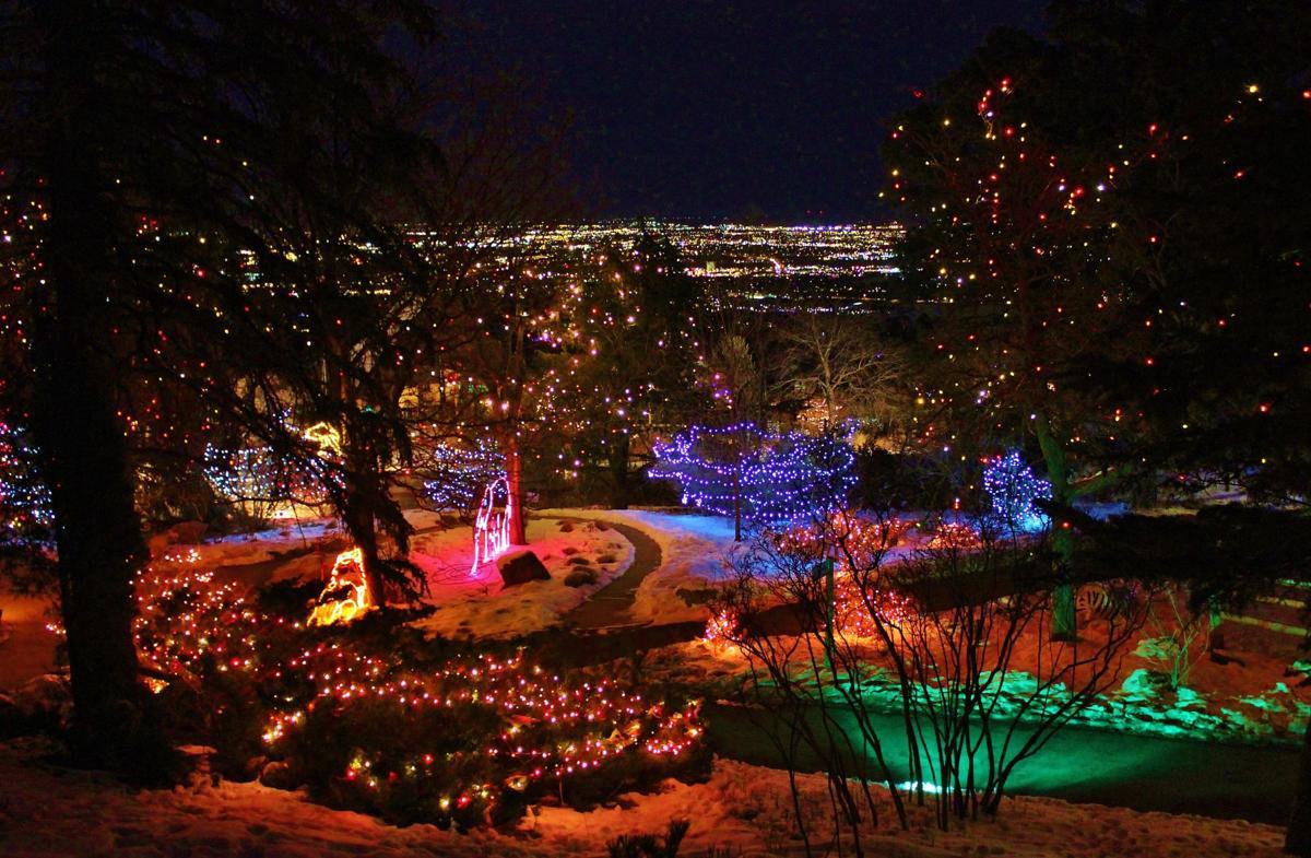 Colorado Springs Zoo S Electric Safari Begins This Week