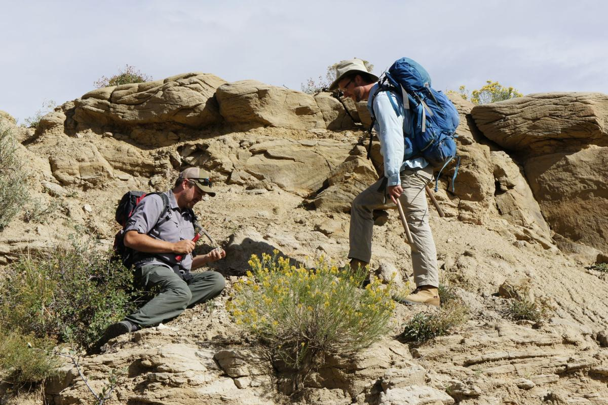 corral bluffs fossils 1.JPG