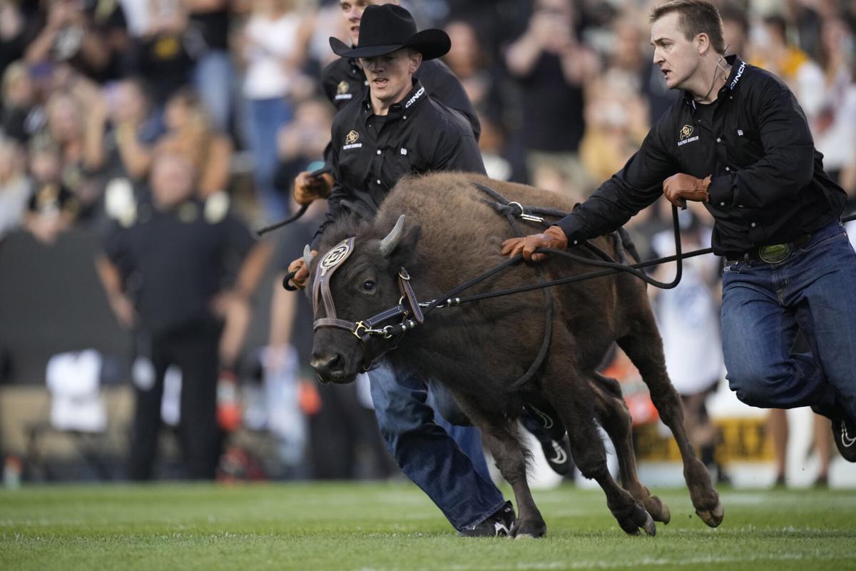 N Colorado Colorado Football