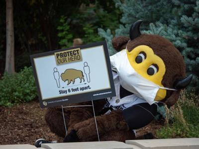 CU Boulder Buffaloes mascot in mask