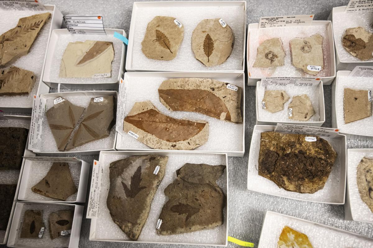 042219-ot-fossil-beds 8.jpg