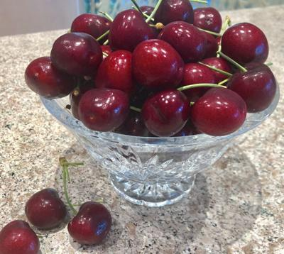 It's a banner year for cherries by the bushel