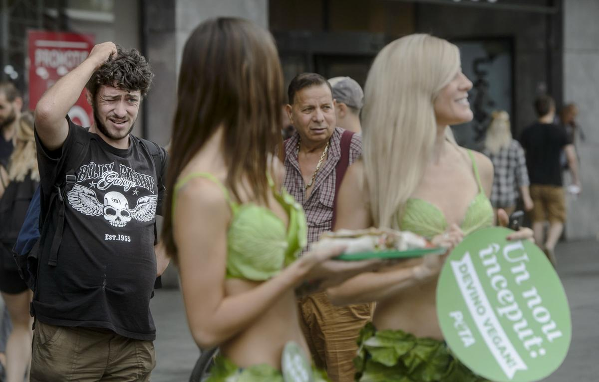 APTOPIX Romania Vegan Lettuce Ladies