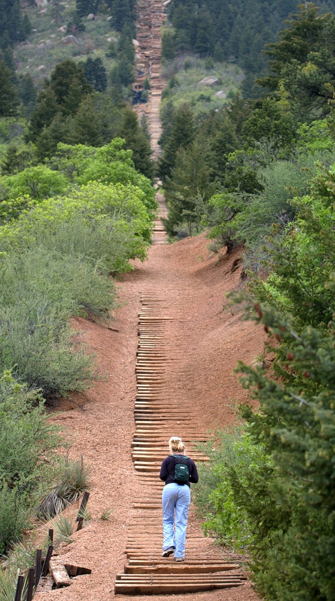 """Monday, May 19, 2003-photo by Jerilee Bennett-A hiker heads up the Manitou Incline. The old railway line is on private property and is posted as """"no trespassing"""", although it is still a very popular place for athletes to do intense training."""
