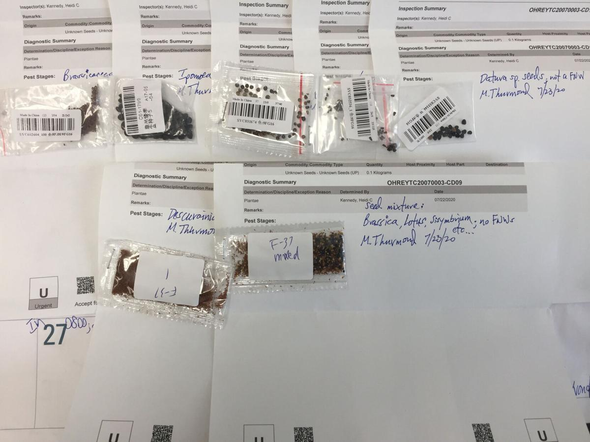 20200730-USDA-PPQ-Unsolicited seed labels1.jpg