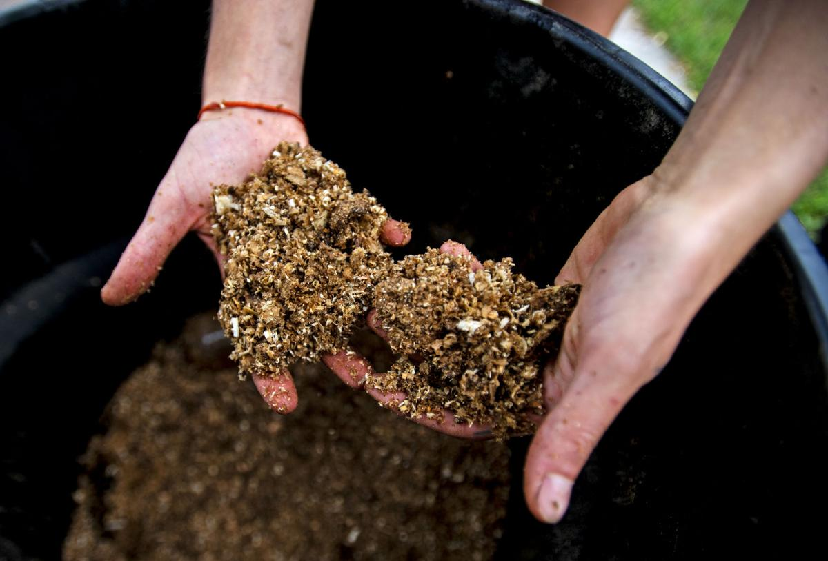 080319-hg-compost 02.JPG