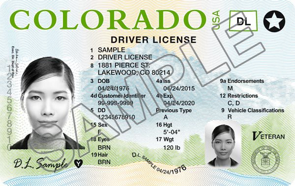 Colorado Springs driver's license