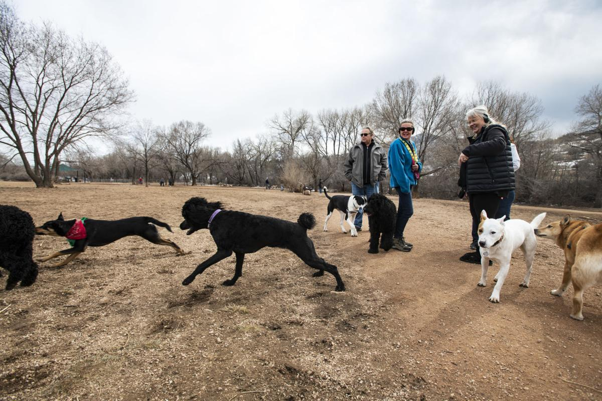(CHEYENNE) Bear Creek Dog Park