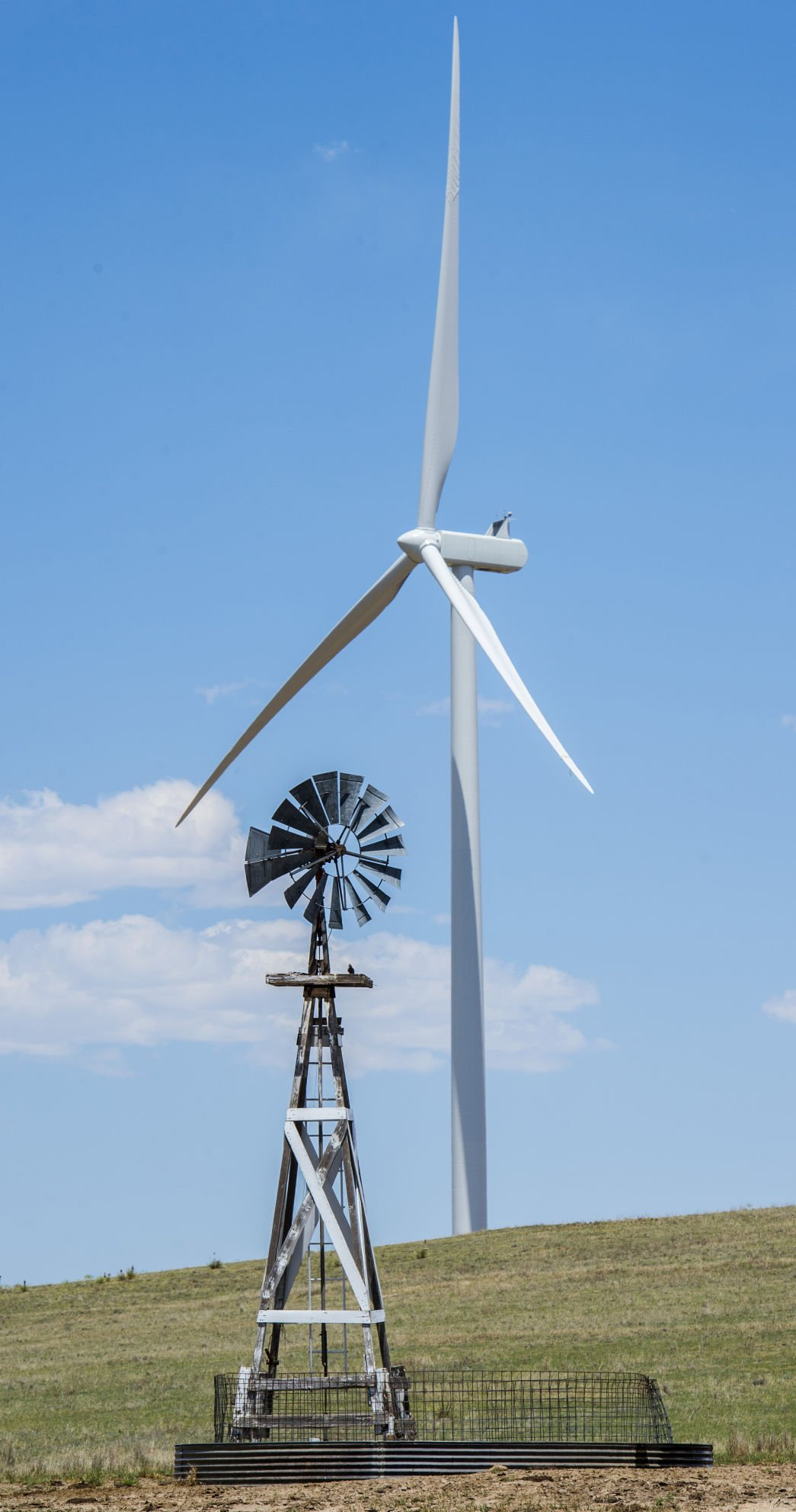 Wind energy the new 'cash crop' for Colorado farmers